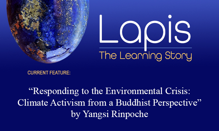 Lapis: The Learning Story